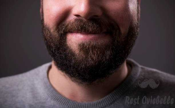 closeup of a man beard and mustache over gray background - beard oils s and pictures Best Smelling Beard Oils