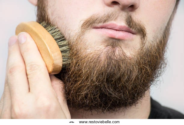 What to Look for in the Best Beard Brush